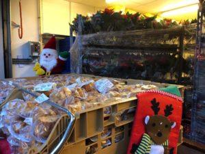 Kerststerren actie Villa Ockenburgh