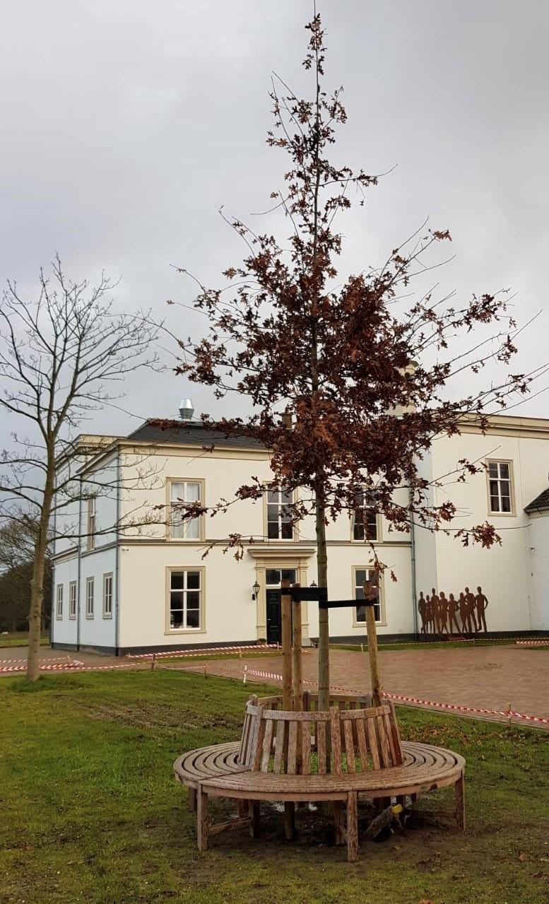Sponsorboom & bank Villa Ockenburgh